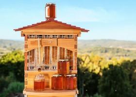 pot ruche flow hive